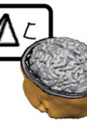 Brain Zaps Improve Math