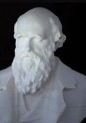 Charles Darwin Gets Busted