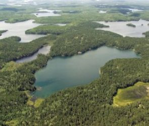 Canada's World-Renowned Freshwater Research Facility Saved by New Management